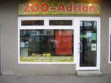 Zoo-Adrian