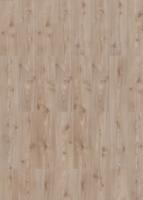 Specht Laminatboden »Classic BK 31« Pinie Silber