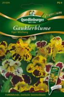 Quedlinburger Gauklerblumen, Tiger Mischung