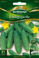 Quedlinburger Einlegegurke, Conny