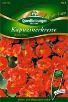 Quedlinburger Kapuzinerkresse, Cherry Rose