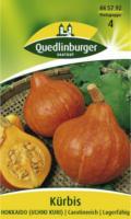 Quedlinburger Kürbis Hokkaido