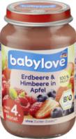 Früchte Erdbeere & Himbeere in Apfel nach dem 4. Monat