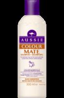 Shampoo Colour Mate