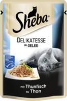 Nassfutter für Katzen, Delicato mit Thunfisch in Gelee (MSC)