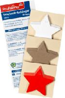 Geschenk-Anhänger Stern 24St