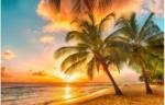 FototapetePalmenstrand Barbados