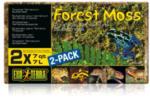 Terraristik - Forest Moos
