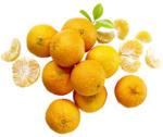 Spanien Clementinen  Kennzeichnung siehe Etikett, jedes 750-g-Netz
