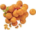 """Spanien Clementinen """"Nadorcott""""  Kennzeichnung siehe Etikett, jedes 750-g-Netz"""