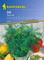 Dill Tetra-Dill