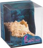Aquariendeko Hydor Atlantis Muschel