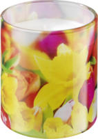 Profissimo Kerze im Motivglas Tulpen