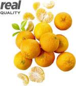 Spanien Clementinen Kennzeichnung siehe Etikett, jedes 1,5-kg-Netz