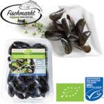 Bio Miesmuscheln Extra aus Aquakultur mit Setzlingen aus einer MSC-zertifizierten, nachhaltigen Fischerei, Nordostatlantik,  jede 1-kg-Schale (Abtropfgewicht)