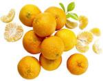 Spanien Clementinen Kennzeichnung siehe Etikett,  jedes 1-kg-Netz